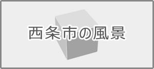 地ボタン3