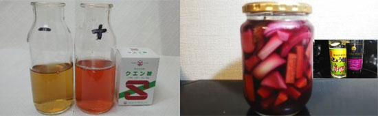 抗酸化成分4