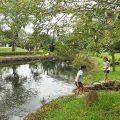 西条市内公園の風景